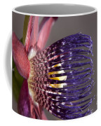 Passiflora Alata - Passion Flower - Ruby Star - Ouvaca Coffee Mug