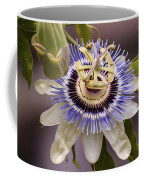 Passiflora Caerulea Coffee Mug