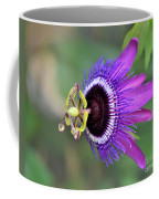 Passiflora Lavender Lady Coffee Mug