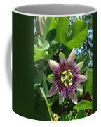 Passion Flower 1 Coffee Mug