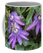 Passion Vine Flower Rain Drops Coffee Mug
