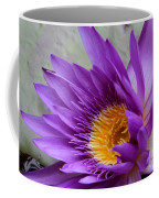Passionate Purple Water Lily Coffee Mug