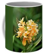 Pastel Peach Petals Coffee Mug