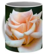 Pastel Peach Rose Coffee Mug