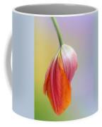 Pastel Petal Coffee Mug