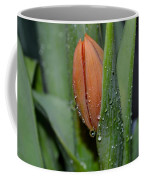Pastel Tulips Buds Coffee Mug