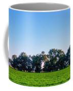 Pasture Tree Line Summer 15798 Coffee Mug