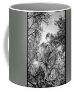 Patagonia Bw 4 Coffee Mug