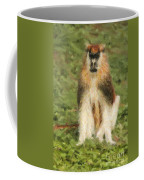 Patas Monkey Erythrocebus Patas  Coffee Mug