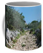 Path Among Olive Trees Coffee Mug
