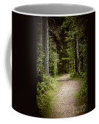 Path In Old Forest Coffee Mug