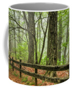 Path Into The Forest Coffee Mug by Debra and Dave Vanderlaan