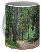 Path Through The Pines - Casper Mountain - Casper Wyoming Coffee Mug