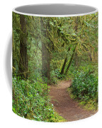 Path Through The Rainforest Coffee Mug