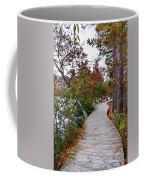 Path Through The Wetlands 10 Coffee Mug