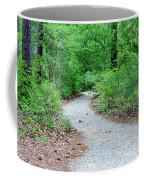 Path Through The Woods Coffee Mug