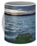 Path To The Bay Coffee Mug