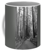 Pathway Through The Trees Coffee Mug