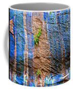 Pattern On Wet Canyon Wall From River Walk In Zion Canyon In Zion National Park-utah  Coffee Mug
