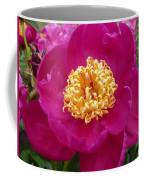 Paula Fay Coffee Mug
