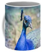 Pavo Cristatus II Indian Blue Peacock Coffee Mug