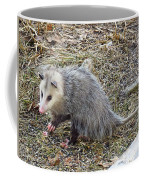 Pawing Possum Coffee Mug