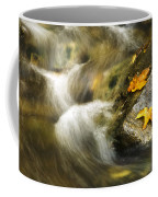Peaceful Creek Coffee Mug