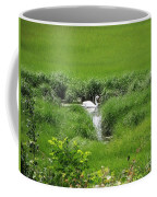 Peaceful Reflection Coffee Mug