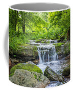 Peaceful Stream Coffee Mug