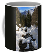 Peaceful View Coffee Mug