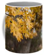 Peacefull Fall Walk Coffee Mug