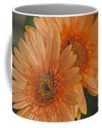 Peach Daisy Coffee Mug