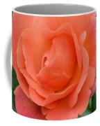 Peach Faced Rose Coffee Mug