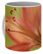 Peach Lily 1 Coffee Mug