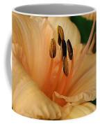 Peach Suprise Coffee Mug