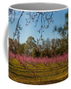 Peach Tree A Bloom Coffee Mug