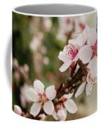 Peach Tree Blossoms Coffee Mug