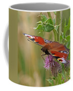 Peacock Butterfly On Thistle Square Coffee Mug