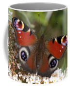 Peacock Butterfly Coffee Mug