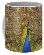 Peacock Courting Coffee Mug