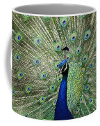 Peacock Display Coffee Mug
