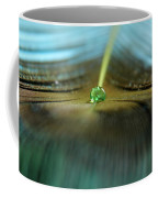 Peacock Falls Coffee Mug