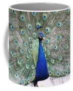 Peacock Fanning Coffee Mug