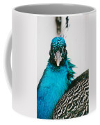 Peacock Front View Coffee Mug