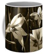 Peacock Gladiolus Triptych Coffee Mug