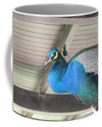 Peacock In The Rafters Coffee Mug