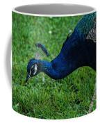 Peacock Portrait 4 Coffee Mug