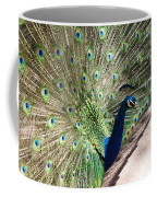 Peacock Show Coffee Mug