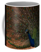 Peacock Show Off Coffee Mug