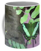 Peacock Swallowtail Coffee Mug